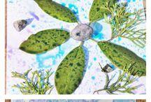 Plant art activity