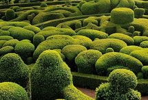 | gardens | / Interesting and creative approach for GARDENING !