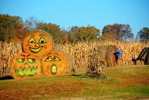 Holiday yard decorations / by Kristy Latham