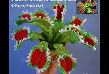 Virkatut kasvit