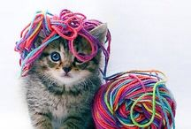 Cats&Crafts / For craft and cat lovers