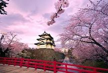 Japan Holidays / Simons Holidays Provide customized Japan Tour Packages @ very affordable Prices from Simons Holidays in India. Book Japan Travel Package for Hokkaido, Kanto, Kyushu.