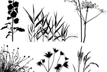 Zeichenvorlagen Bäume und Landschaften