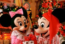 Disney Crazy ❤