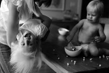 Photos I Want / by Lynn Hague