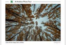 Landscapes Al Andalus Photo Tour / Paisajes Andaluces y Españoles