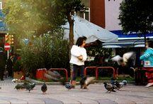 Cinemagraph / Copyright 2104 Seda Selin Boz