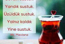 şems@mevlana