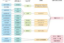 omics_network