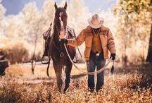 Western Horses / Western riding,Cowboys,Cowgirls,quarter horses,reining, cutting roping,