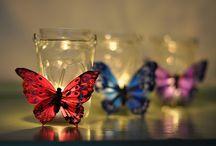 butterflies / by Heather Gross