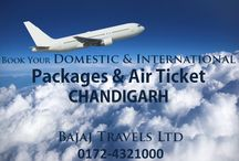 Air Ticket Booking / We deals in domestic and international air tickets booking and visa services in Chandigarh. Contact us 0172-4321000