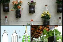 Plants/flowers Recycle ideas.