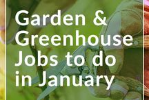 Jobs to do this month