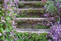 terasové zahrady