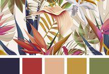 room palette