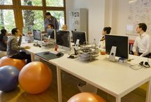 Startup Offices