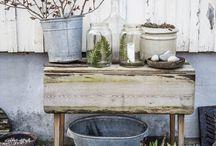 Garden / by Martina Linderova