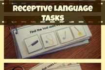receptive language tasks