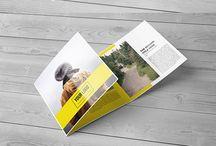 Brochure & Poster