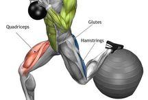 muscle quads