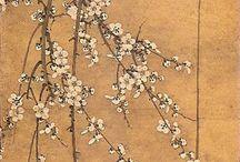 цветы/рисунки