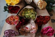 Roses my favorite flowers / by Linda Prigge Wackenstedt