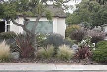 Front Landscaping Ideas / by Andrew Martinez
