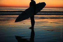 sun surf sand / summer living