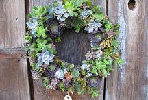 wreaths / by Katie Nash