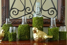 moss it... / by Janis @All Things Beautiful