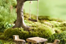 Miniature Fairy Gardens