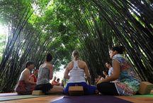 Yoga / @macawlodge we love #yoga #wellness #armony #nature #macawlodgeyogaretreats