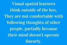 Visual Learning Facts