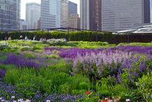 Spazi verdi in città / I progetti green più belli delle grandi metropoli di tutto il mondo