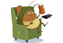 How Do I Kill Roaches / http://howdoikillroaches.com   Learn how to get rid of roaches.