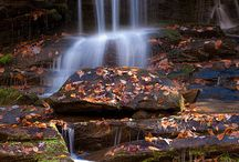 Waterfalls / by Visit Gatlinburg