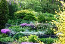 Παρτερια κήπου