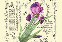 calligraphy & botanicalart