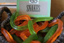 Luke's 4th Birthday Reptiles