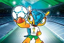 World cup 2014 tickets / tickets and info about the 2014 world cup tickets