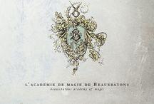 L' Académie de Magie de Beauxbatons / Beauxbatons Academy of Magic