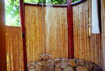 Backyard - Outdoor Shower