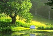 Pond ideals