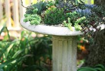 GARDENING - DECOR / by a'rie grant