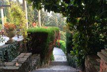 Poggio Verde Country Villa Grounds