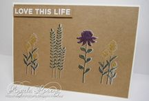 2016 occasions catalogue  stampin up