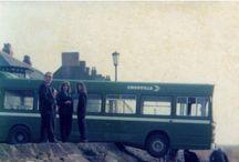 buses english