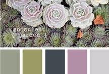 Color palettes / by How to Nest for Less