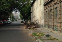 Bessenyei utcai front / A Bessenyei utcában is van néhány fa